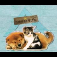 """Hotel """"Na 4 Łapy"""" dla psów, kotów, i innych zwierząt, Ostrów Wielkopolski"""