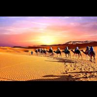SAHARA HOLIDAY TOURS, Casablanca