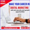 IT and Digital Marketing Course In NewZealand   NZISD